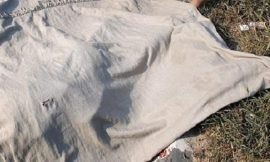 पतंग लुटते समय 8 साल के मासूम को तेज रफ्तार वाहन ने मारी टक्कर, मौत
