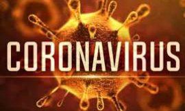 जालंधर में कोरोना ब्लास्ट, 120 लोगों की कोरोना रिपोर्ट आई पॉजिटिव 2 की मौत