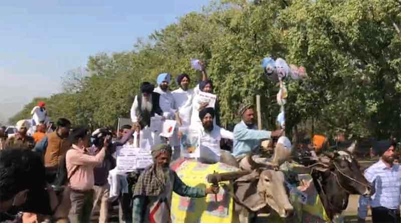 पेट्रोल-डीजल की बढ़ती कीमतों पर अकाली दल ने बैलगाड़ियों पर बैठकर निकाला रोष मार्च