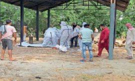 जालंधर में मंगलवार को आई 307 लोगों की कोरोना रिपोर्ट पाजिटिव, 6 लोगों की मौत