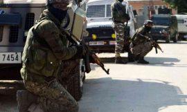 जम्मू-कश्मीर के त्राल और शोपियां में एनकाउंटर, 5 आतंकवादी ढेर